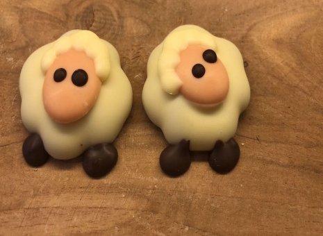 Hazelnoot praliné schaapjes